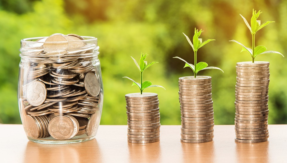 money-investment-growth